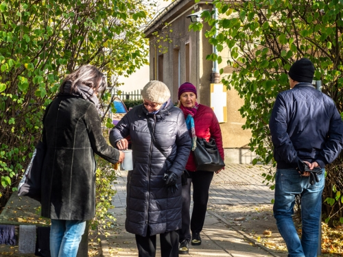 Kwesta na cmentarzu - listopad 2019